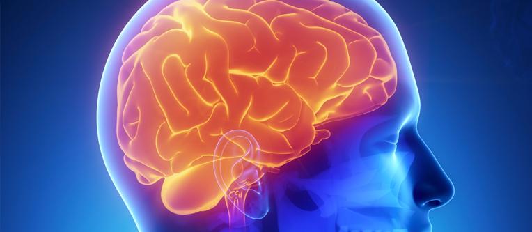 Clinica_Cauchioli_-_Blog_-_Esclerose_Multipla