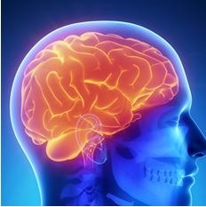 Esclerose Múltipla: Entenda a doença